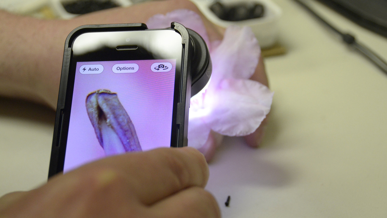 ProScope Micro Mobile: Professional Microscope for iPhone and the iPad