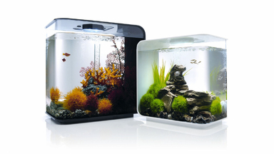 biOrb FLOW 30-Liter Aquariam