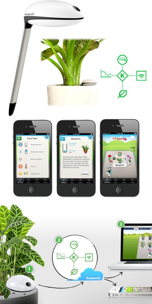 Desire this koubachi indoor and outdoor wifi plant sensors - Monitor your indoor plants with the koubashi wi fi sensor ...