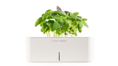 Click & Grow Self Watering Smart Flowerpot