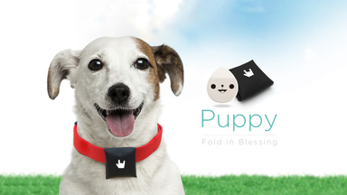 Track Your Pet with BeLuvv Puppy