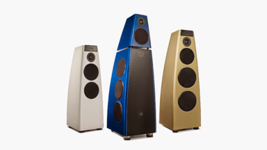 Meridian Audio Special Edition $80,000 DSP Digital Active Loudspeakers