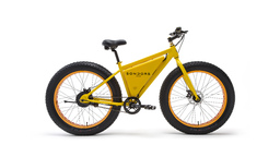 Sondors Affordable Electric Bike