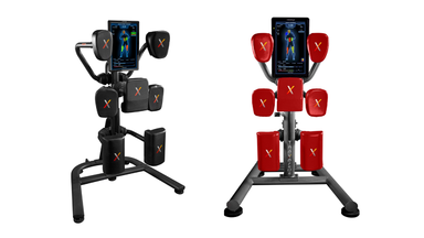 Nexersys Home and Pro Personalized Boxing Units